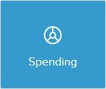 Pie chart icon saying spending