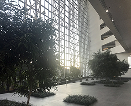 Atrium with glass windows and trees