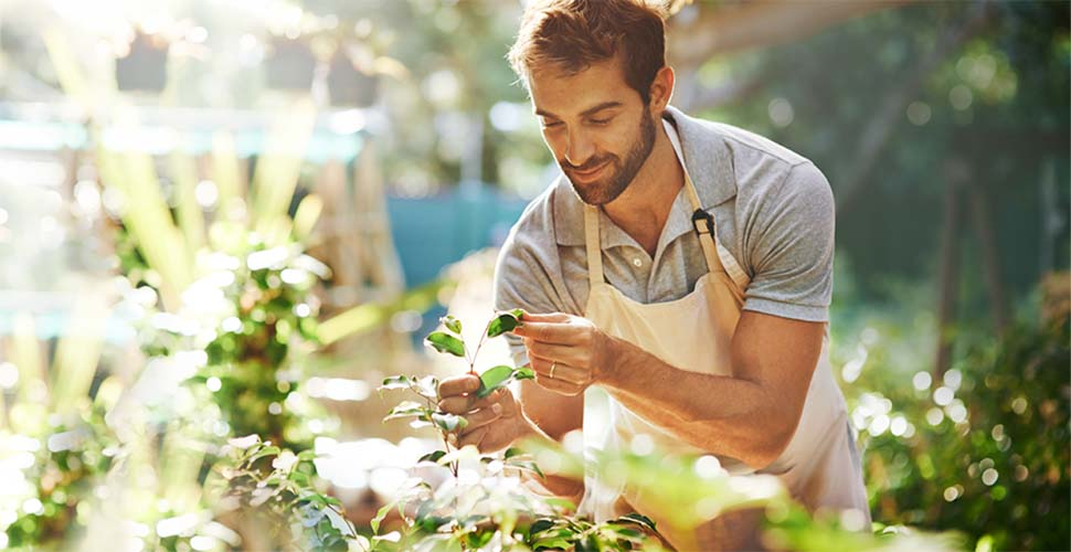 Man wearing apron tending to plants