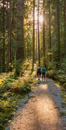 Two people walking on a path in the woods